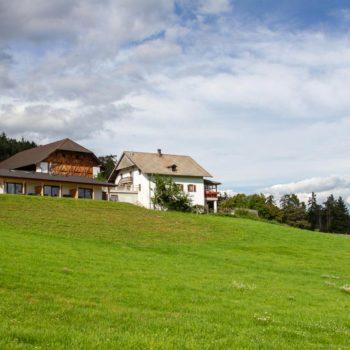 Der Oberpfaffstallerhof in Klobenstein auf dem Ritten